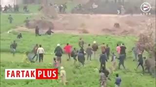 لحظه حمله پلنگ به مامور حیات وحش