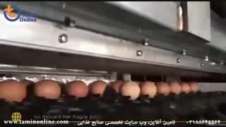 خط بسته بندی تخم مرغ