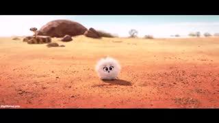 انیمیشن کوتاه و تاثیر گذار Bilby 2018