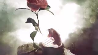 نماهنگ رازکوچه