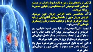 درمان و پیشگیری نارسایی کلیه