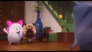 دانلود انیمیشن The Secret Life Of Pets 2 با دوبله فارسی