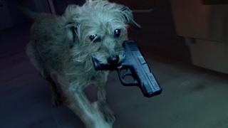 همون جان ویک، ولی سگش (John Wick 1)