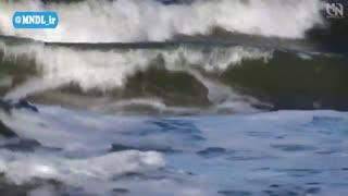 مستند تخلیهی اقیانوس ها با دوبله فارسی - قسمت 1