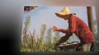 """چکنم : شاعر حسن اسدی """" شبدیز با دکلمه ی علی تنها"""