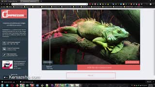 کاهش حجم تصاویر باعث افزایش سرعت سایت و رضایت کابران