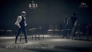 ویدیو معرفی همه ی اعضای اکسو برای دیبوت ( EXO )