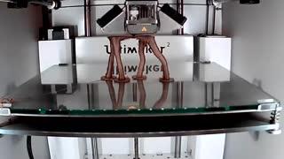 پرینت سه بعدی تندیس حیوانات