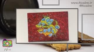 بیسکولنز #8: عکس هایی از جهان میکروسکوپی