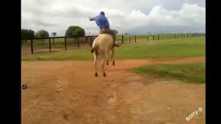 افتادن خنده دار از روی اسب