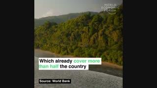 برنامه کاستاریکا برای به صفر رساندن انتشار کربن تا سال 2050
