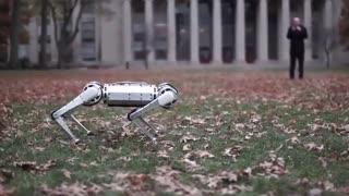 """""""مینی چیتا"""" روبات بامزه MIT که قابلیت پشتک وارو زدن دارد - سختافزارمگ"""
