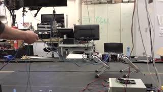 ربات چهارپا فوق پیشرفته با قابلیت مانور بالا