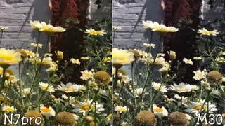 مقایسه دوربین Galaxy M30 و Redmi Note 7 Pro
