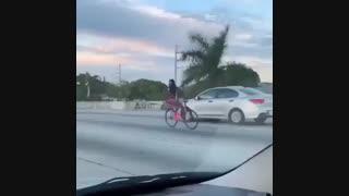 یک روز عادی در فلوریدا !