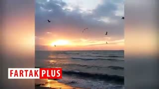 نمایی از غروب آفتاب در سواحل خلیج فارس