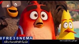 انیمیشنThe Angry Birds 2|انیمیشن پرندگان خشمگین2|کارتونThe Angry Birds 2|کارتون پرندگان خشمگین2
