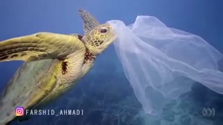 جهان پلاستیکی