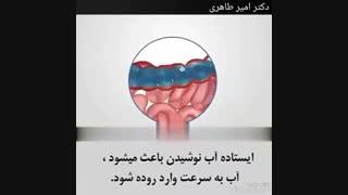 ایستاده آب ننوشید! | دکتر امیر طاهری