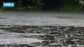 مرگبارترین های جهان با دوبله فارسی - طوفان گرمسیری