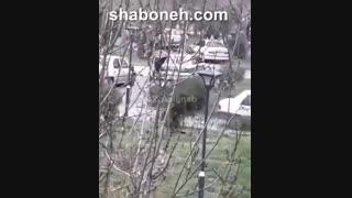 فیلم قتل دو مامور پلیس و همسر توسط شوهر عصبانی در مشهد