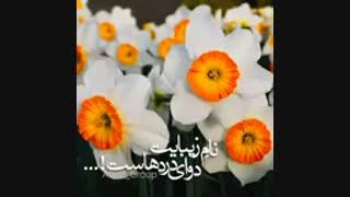 امام علی (ع) میفرمایند: