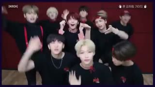 "Stray Kids ""MIROH"" Fan Featuring Guide Video"