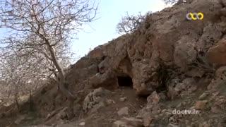 اسرار حیات وحش ایران 14 کفتار