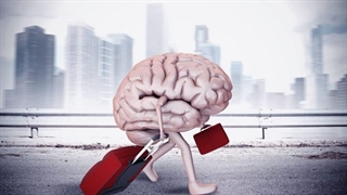 فرار مغزها از شایعه تا واقعیت!