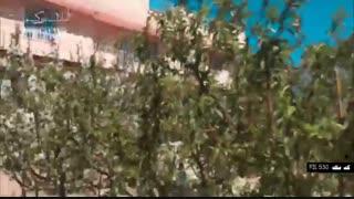 باغ و باغچه در شهریار کد 530 املاک بمان
