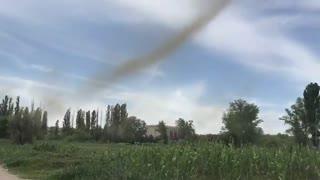 هجوم میلیاردها پشه در روسیه