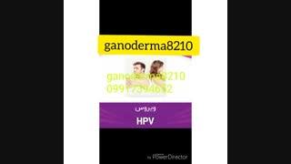 تبخال تناسلی ودرمان زگیل تناسلی ویروس HPV گانودرما