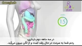 مهمترین علائم بارداری را بدانید؟