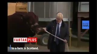 گاوچرانی بوریس جانسون در اسکاتلند