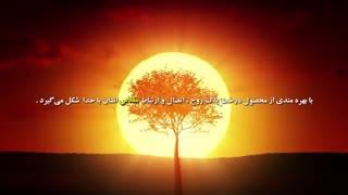 درخت پاک و درخت ناپاک روح خدایی انسان