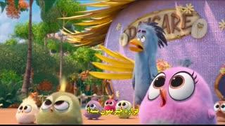 دانلود زیرنویس فارسی انیمیشن پرندگان خشمگین - The Angry Birds Movie 2 2019  با زیرنویس فارسی چسبیده FILM7_MEDIA@