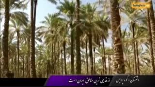 شهر زیبای دشتستان و کوه شگفت انگیز پردیس در بوشهر - بوکینگ پرشیا