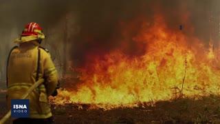 آتشسوزیهای استرالیا، «فاجعه» میشود؟