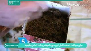 چگونگی پرورش قارچ خوراکی در منزل