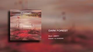 Dark Forest - Ali Jahangard - علی جهانگرد