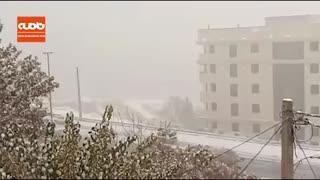 بارش شدید برف و کندی حرکت خودروها