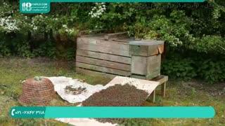 پرورش زنبورهای عسل - 118فایل